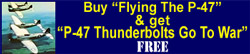 "Buy ""Flying the P-47"" & get ""P-47 Thunderbolts Go to War"" FREE"